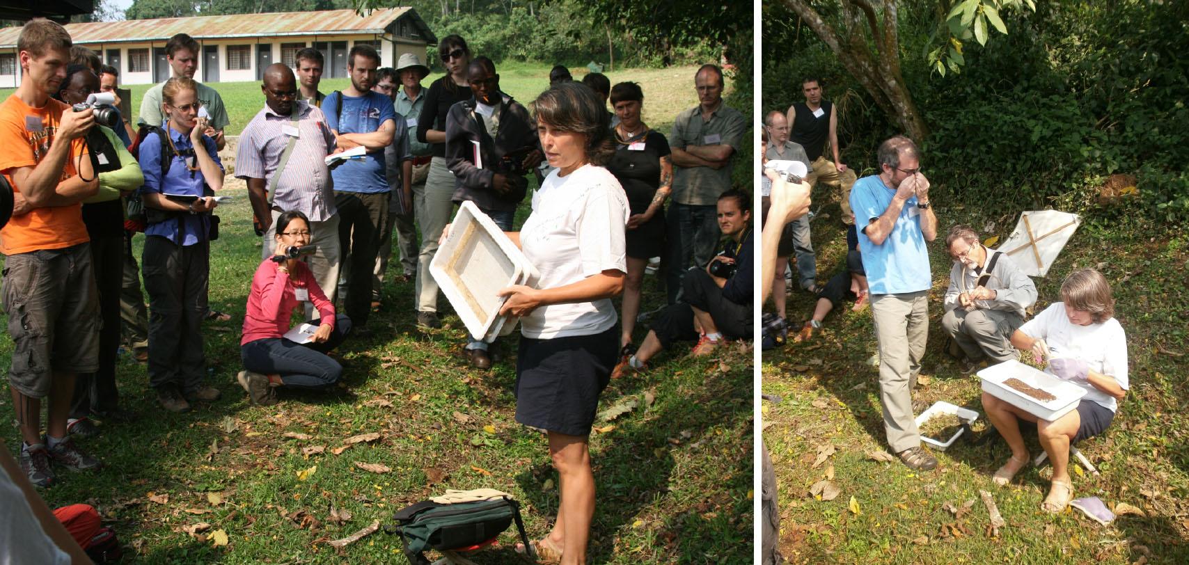 Leeanne mentre dimostra una tecnica di raccolta delle formiche terricole (nella lettiera e nello strato più superficiale del terreno) che si basa sull'ultilizzo di setaccio e vassoio (Foto: D. King & I. Toni).